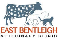 Black Rock And East Bentleigh Veterinary Clinics - Vet Australia