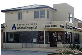 South Eastern Animal Hospital - Vet Australia