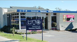 Greensborough Veterinary Hospital