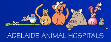 Prospect Road Veterinary Hospital - Vet Australia