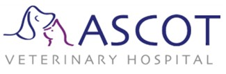 Ascot Veterinary Hospital - Vet Australia
