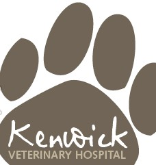 Kenwick Veterinary Hospital - Vet Australia