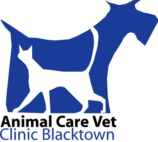 Animal Care Vet Hospital - Vet Australia