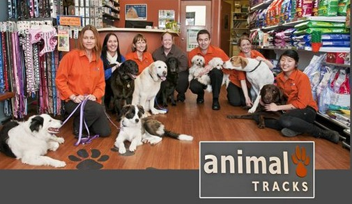 Animal Tracks Veterinary Clinic - Vet Australia