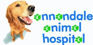 Annandale Animal Hospital - Vet Australia
