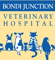 Bondi Junction Veterinary Hospital - Vet Australia