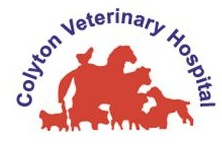 Colyton Veterinary Hospital - Vet Australia