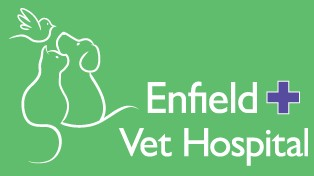Enfield Veterinary Hospital - Vet Australia