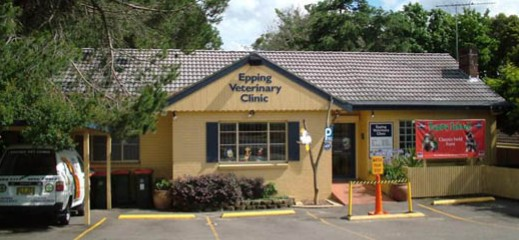 Epping Veterinary Clinic - Vet Australia
