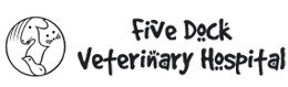 Five Dock Veterinary Hospital - Vet Australia