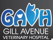 Gill Avenue Veterinary Hospital - Vet Australia