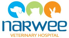 Narwee Veterinary Hospital - Vet Australia