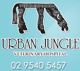 Urban Jungle Vet Hospital