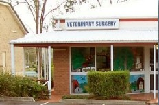 Cusack Lane Veterinary Surgery