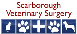 Scarborough Veterinary Surgery