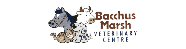 Bacchus Marsh Veterinary Centre