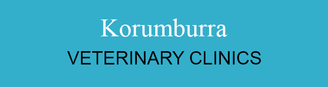 Korumburra Veterinary Clinic