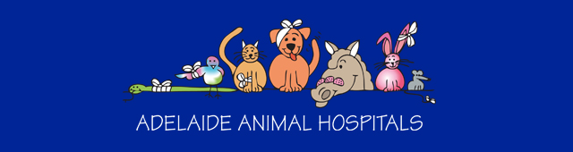Adelaide Animal Hospital