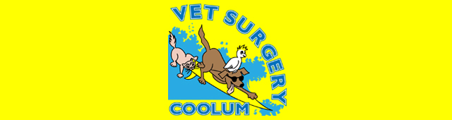 Coolum Veterinary Surgery