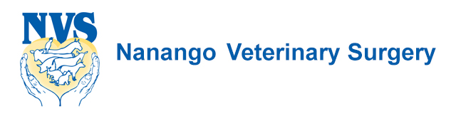 Nanango Veterinary Surgery