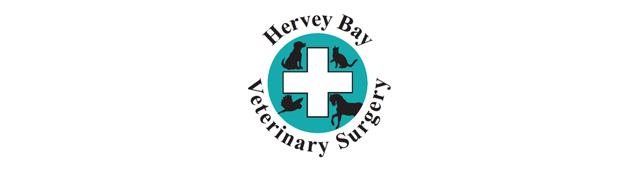 Hervey Bay Veterinary Surgery