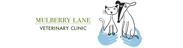 Mulberry Lane Veterinary Clinic