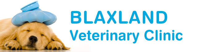 Blaxland Veterinary Clinic