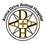 Avoca Drive Animal Hospital - Vet Australia