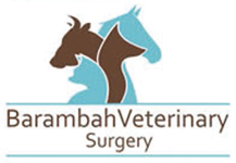 Barambah Veterinary Surgery