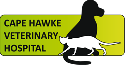 Cape Hawke Veterinary Hospital - Vet Australia