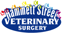 Hammett Street Veterinary Surgery