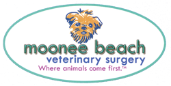Moonee Beach Veterinary Surgery