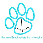 Northern Beaches Veterinary Hospital