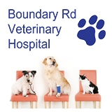 Boundary Road Veterinary Hospital Peakhurst