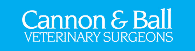 Cannon  Ball Veterinary Surgeons - Vet Australia