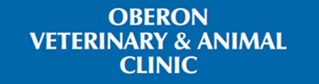 Oberon Veterinary and Animal Clinic - Vet Australia