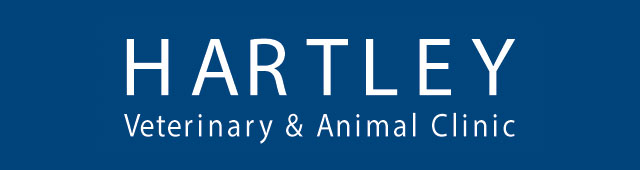Hartley Veterinary Clinic and Animal Centre