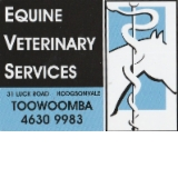 Equine Veterinary Services - Vet Australia