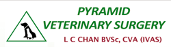 Pyramid Veterinary Surgery