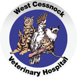 West Cessnock Veterinary Hospital - Vet Australia