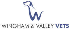 Wingham & Valley Vets